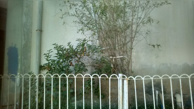 75 Yards Ground Floor Portion is Available for Rent in Gulistan-e-Jauhar, Block:12